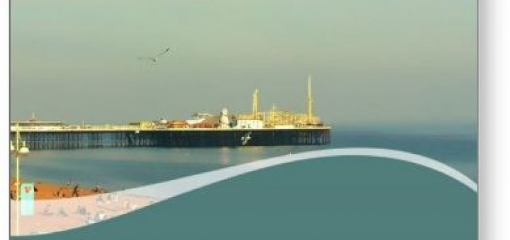 Brighton Pier Seagull Postcard